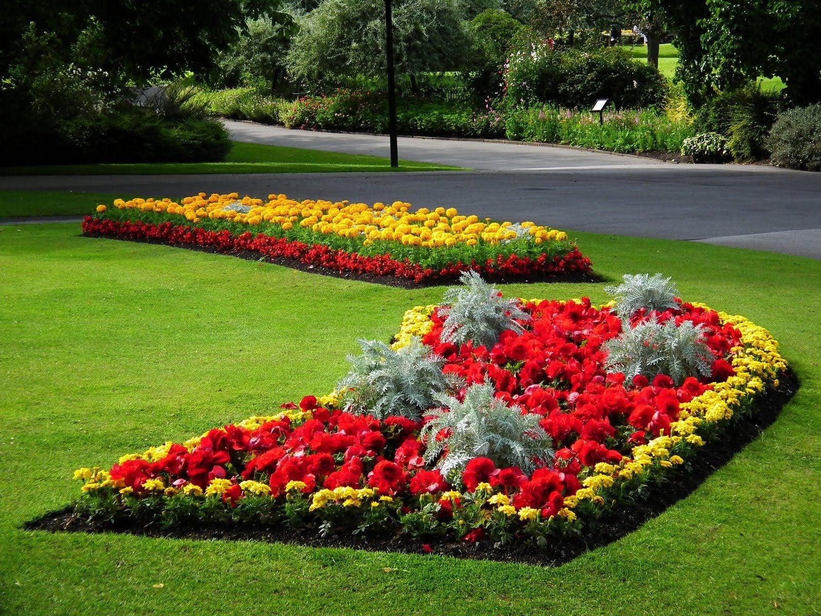 Дизайн цветников и газонов фото вариант корзинки