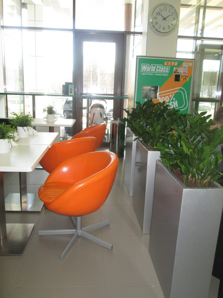 Озеленение фитнес и спа-центров