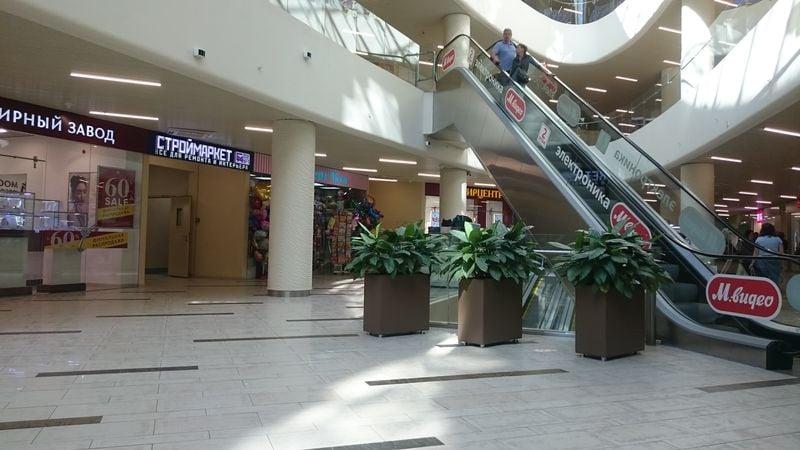 Озеленение торговых центров